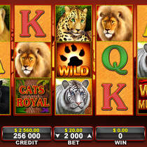 Современный игровой аппарат о диких животных Cats Royal