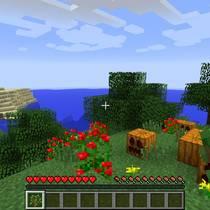 Основные особенности игры Minecraft