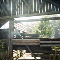 Анонсирована новая игра Reaching For Petals с реалистичной графикой на движке Unreal Engine 4