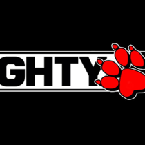 Naughty Dog ответила на вопрос о будущем студии после The Last of Us 2, следующим проектом может стать игра в новом жанре